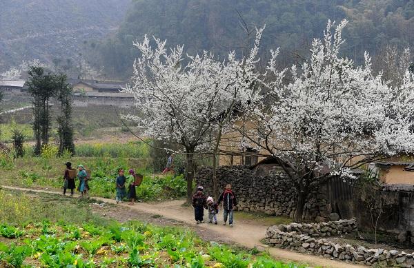 Cảnh đẹp Cao Bằng