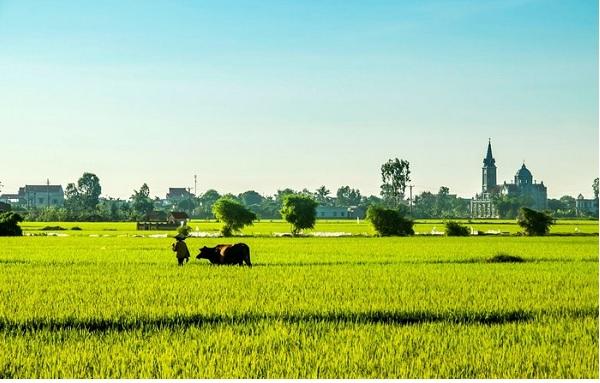 Cảnh đẹp Thái Bình